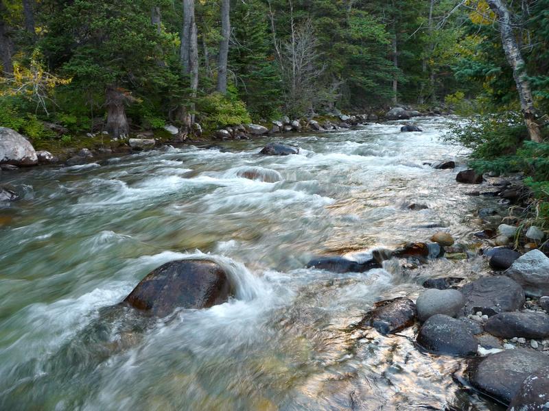 Rock Creek near Red Lodge, Montana