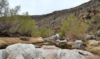 Agua Fria River in Arizona